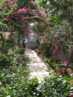 花の回廊 (1)