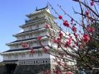 島原城と梅 (1)
